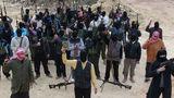 Пентагон оценил число боевиков ИГ в Сирии и Ираке в 6,5 тыс. человек