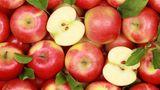 Садоводы сократят экспорт яблока и увеличат их отгрузки на переработку