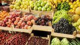 Россельхознадзор назвал условия возобновления импорта молдавских фруктов и овощей