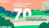 """На Verde.md появилось 70 новых мест для посадки деревьев в парке """"Алунел"""""""