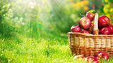 Ученые нашли родину яблок