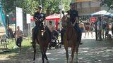 В Вадул-луй-Водэ появилась конная полиция