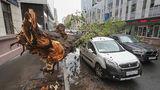 Число пострадавших от урагана в Москве выросло до 168