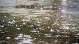 На всей территории страны ожидаются грозовые дожди