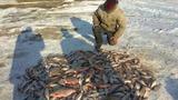 Браконьера с богатым уловом поймали на озере Белеу