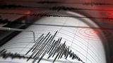 В новогоднюю ночь во Вранче произошло землетрясение