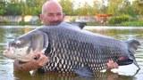 Рыбак поймал самого большого карпа в мире
