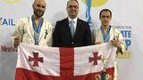 საქართველოს კარატისტთა ნაკრებმა მსოფლიო ჩემპიონატზე ვერცხლი და ბრინჯაო მოიპოვა