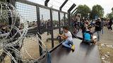 ООН призвала ЕС продолжить принимать беженцев