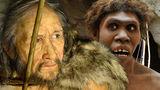 """Неандертальцы и современные люди """"разошлись"""" 800 тысяч лет назад"""