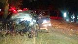 Автомобиль врезался в дерево в Криулянах: 5 человек госпитализированы