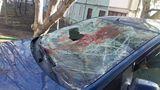 В Кишиневе женщина выместила злость на автомобиле возлюбленного