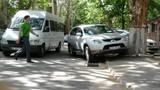 Şoferul unei maşini cu numere diplomatice parcat neregulamentar