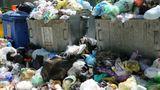 В Бельцах почти две недели не вывозят мусор