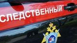 В Астраханской области молодая мать зарезала своего новорожденного сына