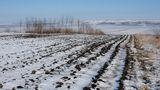 Pericolul apărut în Moldova după Codul Portocaliu de viscol