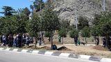 40-წლიანი პაუზის შემდეგ დედაქალაქში ხეების აღწერა იწყება