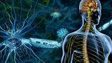 გაფანტული სკლეროზით დაავადებულებს ძვლის ტვინის გადანერგვით უმკურნალეს