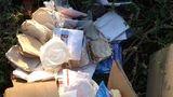На окраину города Бельцы сваливают отходы медицинские лаборатории