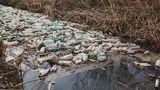 Взяты пробы воды в реке Бык для выявления источников загрязнения
