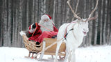 Феминистки открыли страшную тайну Санта Клауса