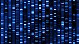 Высокие цены на хранение данных мешают развитию генной терапии
