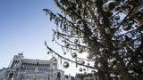 Облысевшую рождественскую ель в Риме предлагают перенести в музей