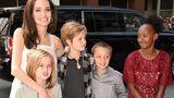 Анджелине Джоли с детьми пришлось вернуться в США из-за решения суда