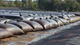 Ученый назвал наиболее вероятную причину ужасающего зловония в Кишиневе