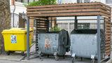 В Кишиневе будут куплены более крупные контейнеры для сбора мусора