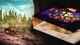 """Палеонтологи научились превращать окаменелости в """"цветные"""" фотографии"""