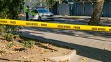 В столице обнаружили человеческие останки