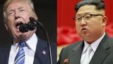 Адвокат Трампа: Ким Чен Ын на коленях просил не отменять саммит