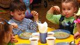 Власти ищут законодательное решение проблемы с питанием в школах и детсадах