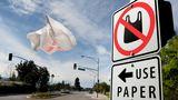 Утвержден законопроект, запрещающий использовать полиэтиленовые пакеты
