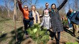 В двух кишиневских парках стало на 20 деревьев больше