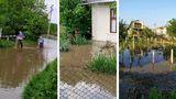 Последствия проливных дождей: дачный посёлок под Бельцами затопило