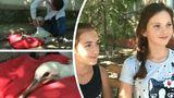 Две школьницы в Григориополе спасли аистенка