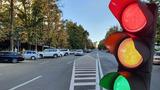 """Установку светофора возле Kaufland назвали """"кретинизмом"""""""