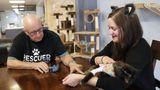 В Висконсине пожилой волонтер кошачьего приюта завоевал интернет