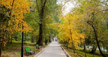 10 октября в Молдове ожидается переменная облачность. Ветер юго-западный, слабый до умеренного.