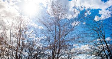 17 января в Молдове ожидается переменная облачность. Ветер северо-западный, слабый до умеренного.