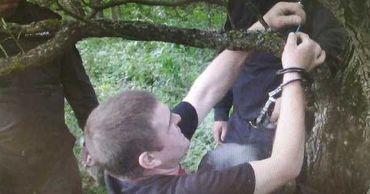 Обвиняемый попытался скрыть следы преступления, инсценировав самоубийство, повесив тело в лесополосе.