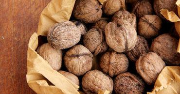 За последние пять лет отечественное производство ореха выросло на 55%.