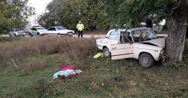 В Фалештском районе автомобиль врезался в дерево.