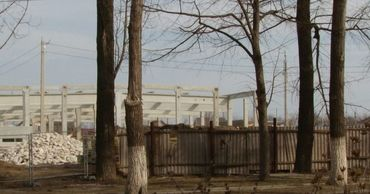 Бельцы получат от Kaufland 650 тысяч леев компенсации за снос деревьев