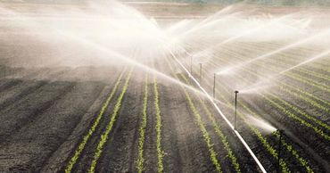 В Молдове расширят площади орошаемых земель.
