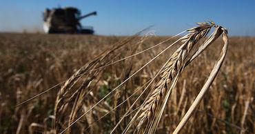 Нацфедерация фермеров призывает объявить форс-мажорную ситуацию в сельском хозяйстве.
