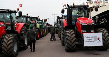 Датские фермеры выехали на тракторах на протест против уничтожения норок.