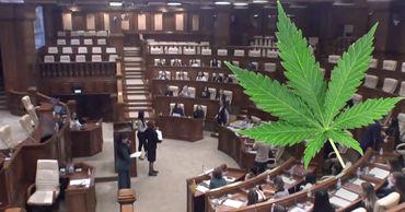Решение, одобренное голосами 29 из 51 депутатов молодежного парламента, не несет юридических последствий.